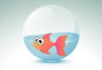 akvarij s ribicama
